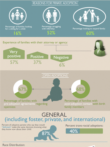 Private Adoptions in the United States Infographic