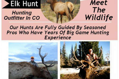 Private Elk Hunting Lodges In Colorado Infographic