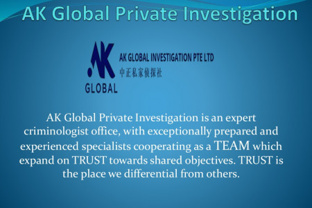 Private Investigation Singapore Infographic