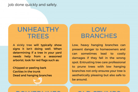 Pro Tree Removal Adelaide Infographic