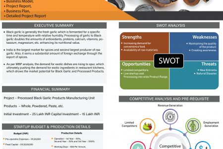 Processed Black Garlic Products Manufacturing Unit Infographic