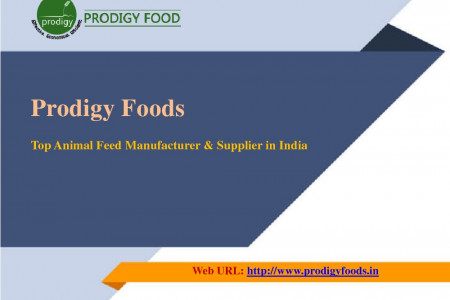 Prodigy Foods: High-quality DDGS Feeds Manufacturer & Supplier in India Infographic