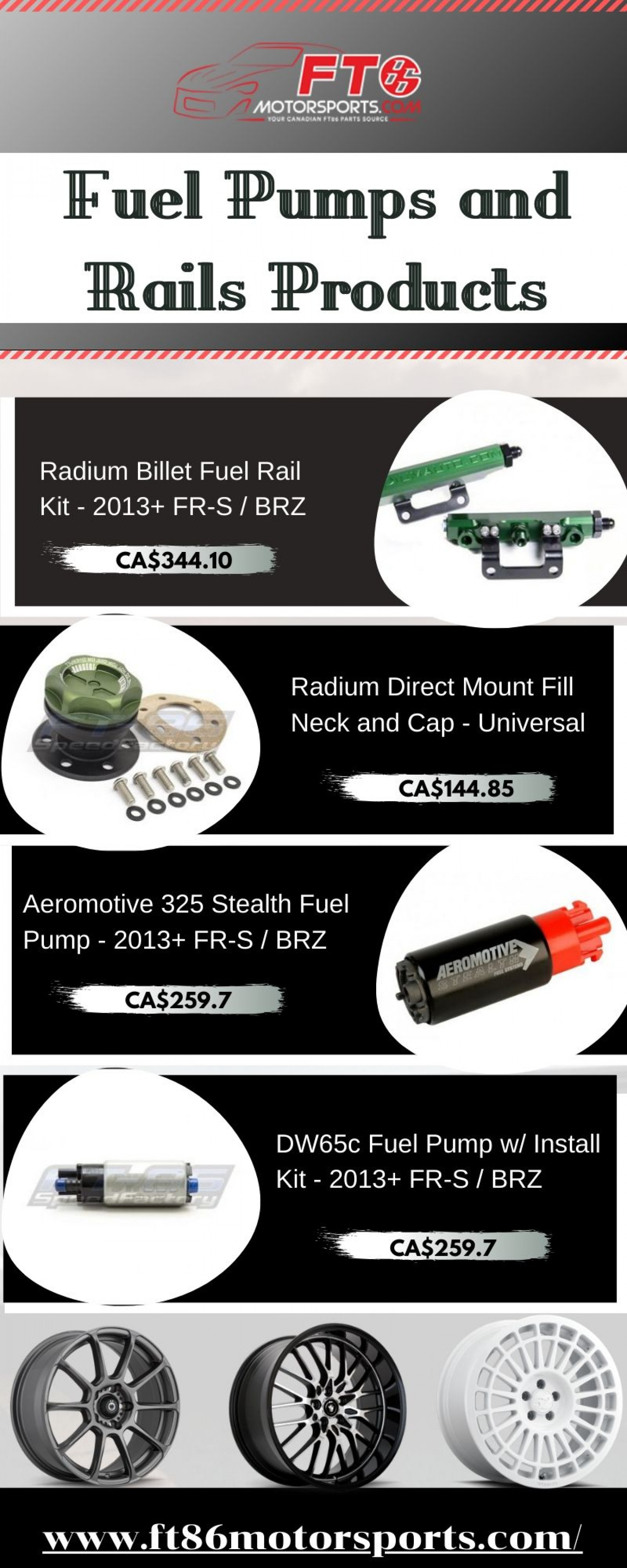 Products for Fuel Pumps and Rails in Canada Infographic