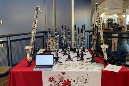 Professional A Clarinets Infographic