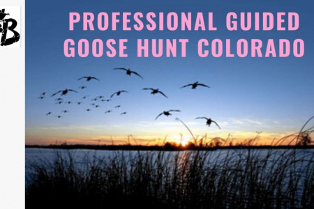 Professional Guided Goose Hunt Colorado Infographic