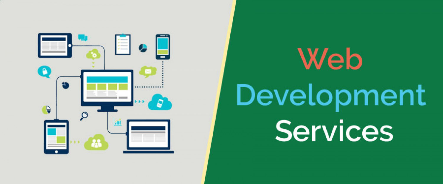 Professional Web Development Services Infographic