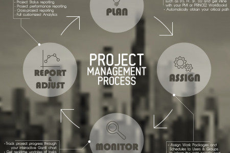Project Management Process Infographic