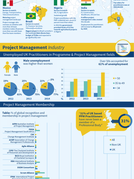 Project Management Timeline Infographic