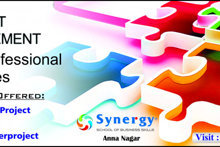 Project Management Training software at Synergy. Infographic