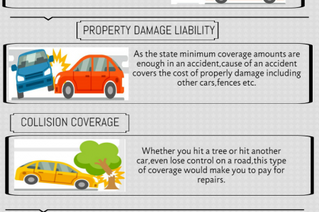 Promax Insurance Agency - Orange County Auto Insurance Infographic
