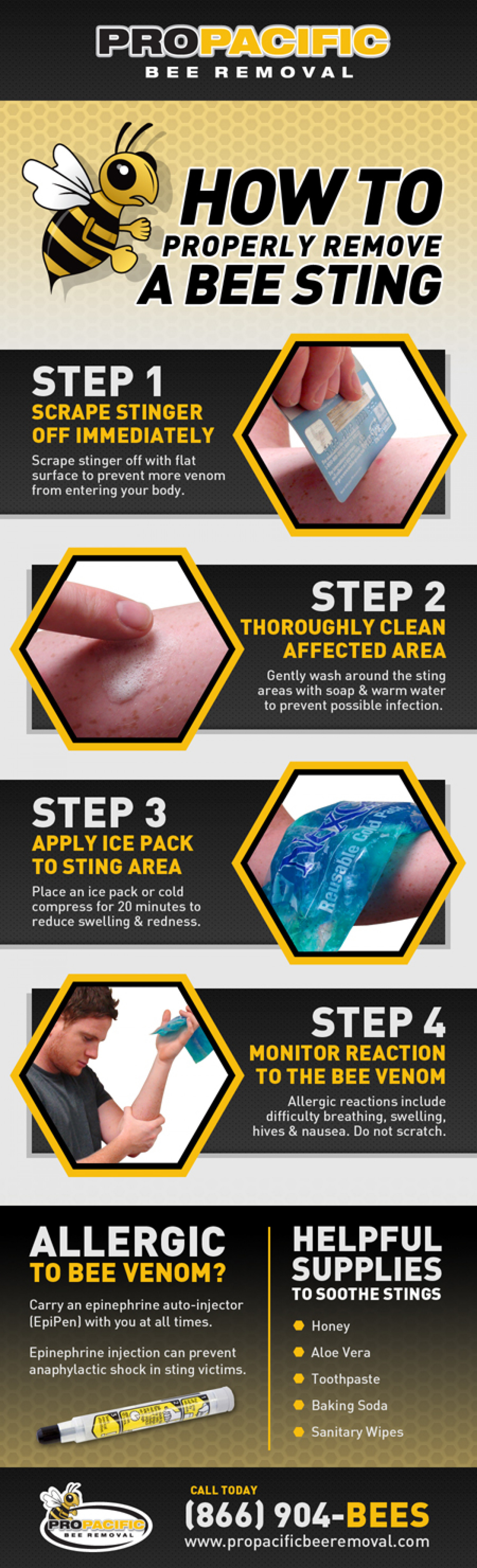 Properly Remove & Treat A Bee Sting Infographic