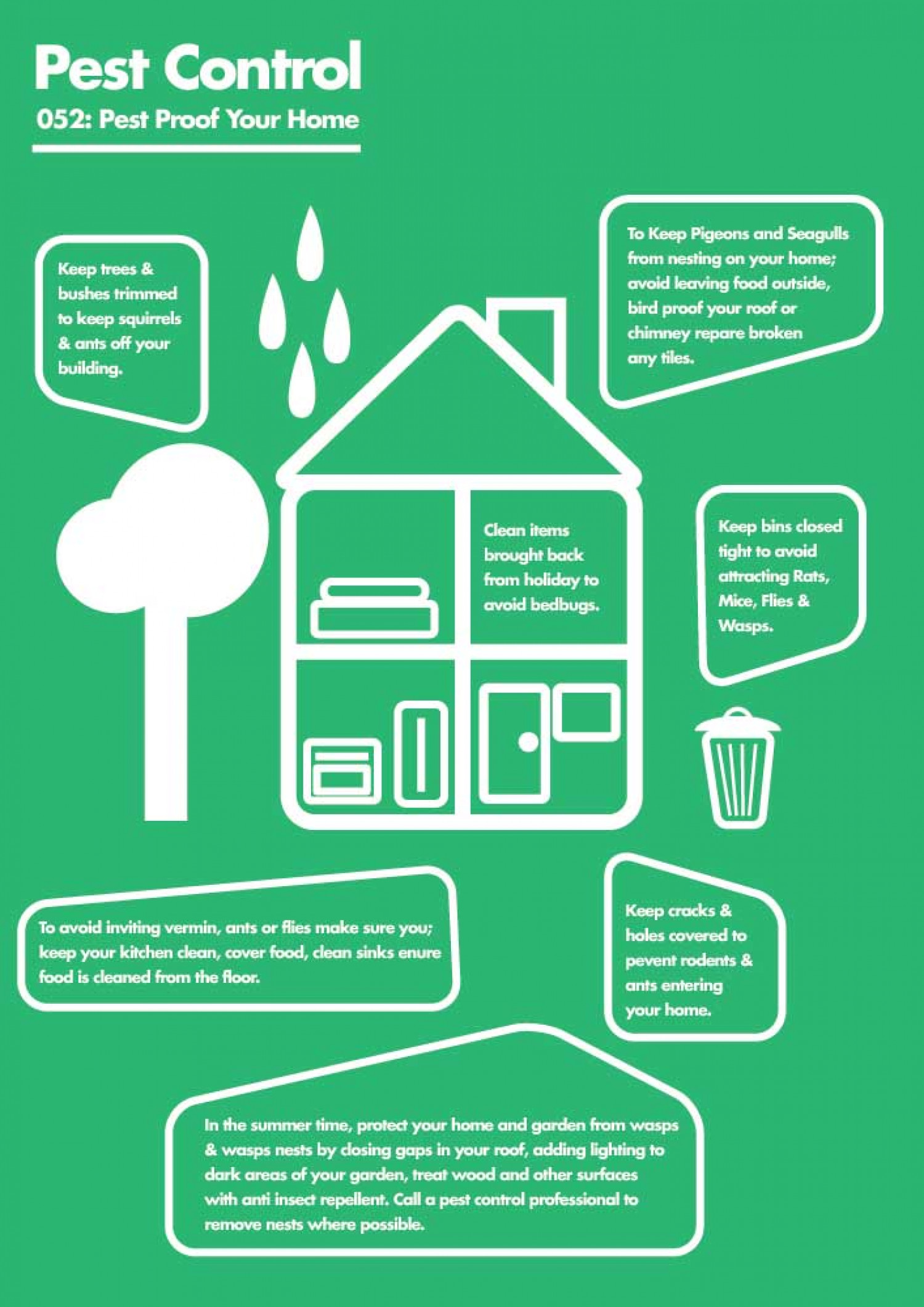 Protect Your Home Against Pest Problems Infographic