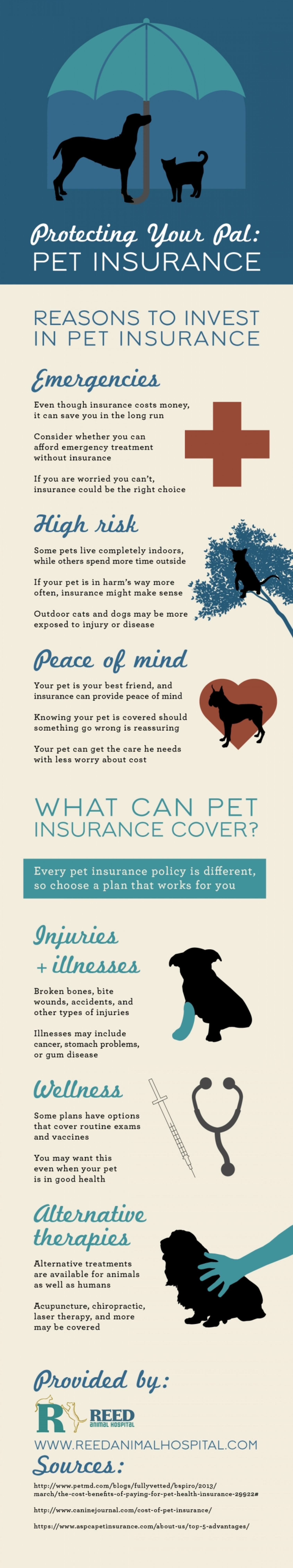 Protecting Your Pal: Pet Insurance  Infographic