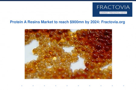 Protein A Resins Market to surpass $900mn by 2024 Infographic