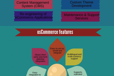 Provide a Wide Range of Features to eCommerce Store  Infographic