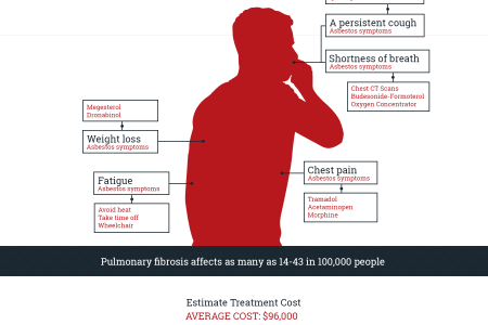 Pulmonary Fibrosis and Asbestos Exposure Infographic