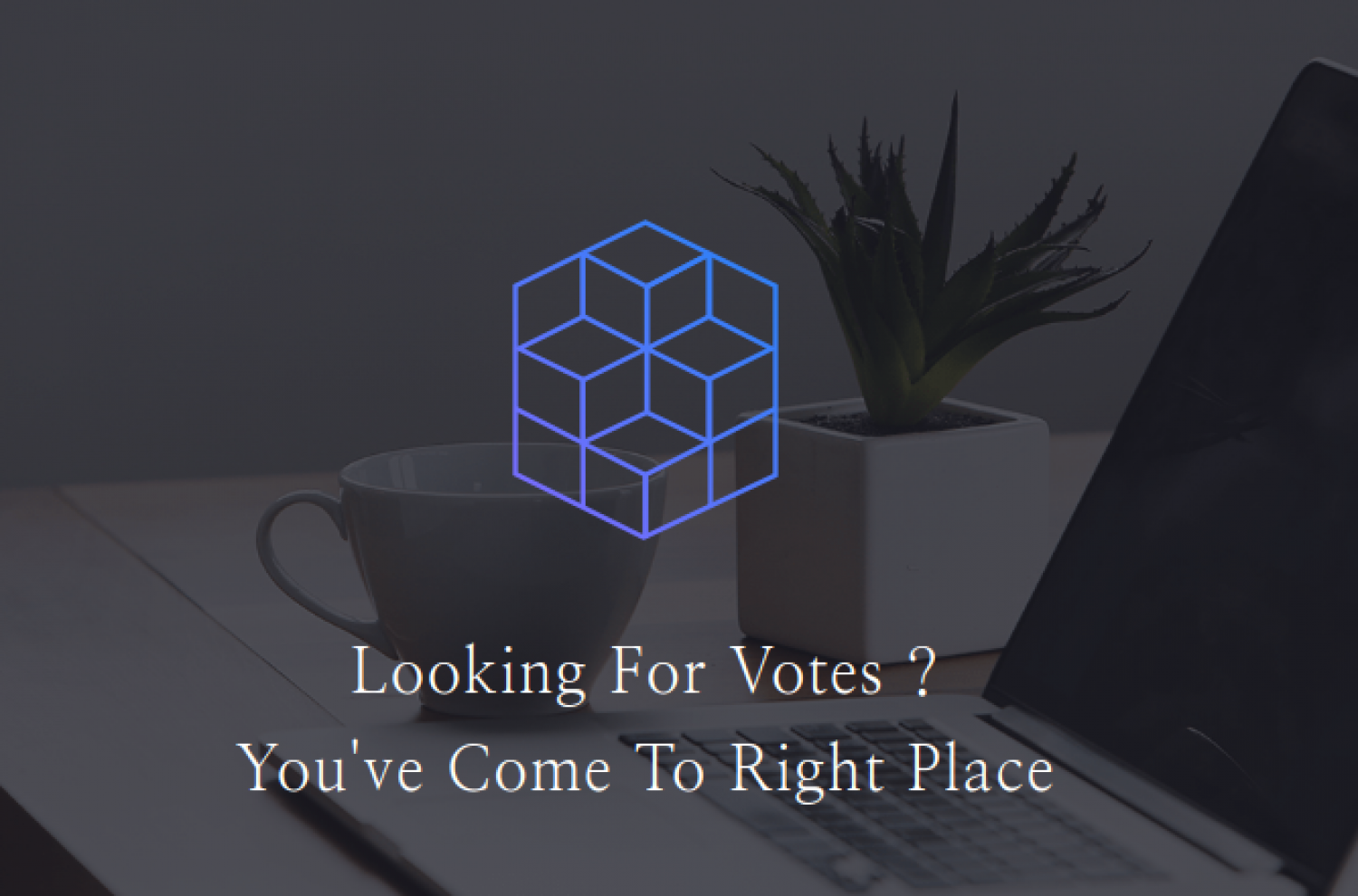 Purchase Votes Online Infographic
