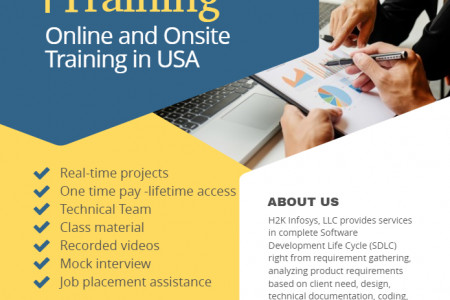 Python Online and Onsite Training in USA Infographic