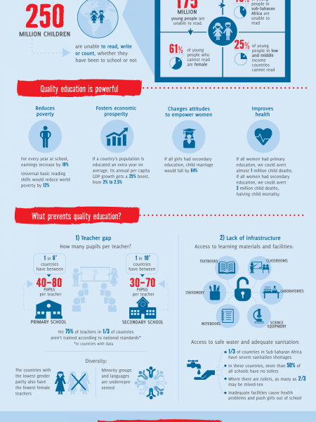 Quality Education for the World We Want Infographic