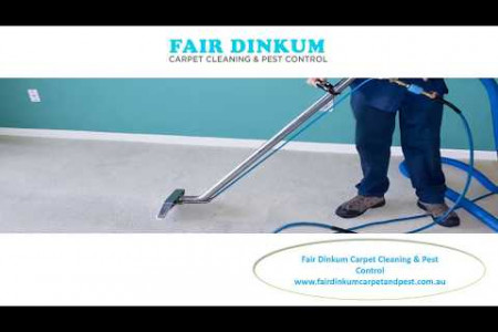 Quality Oriented Carpet Cleaning Services and Pest Free Services : Fair Dinkum. Infographic