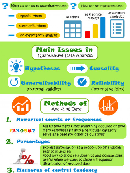 Quantitative Data Analysis Inforgraphics Infographic