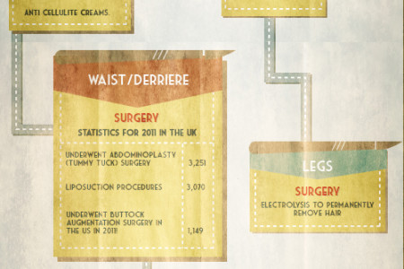 Quest to Tackle the Ageing Process Infographic