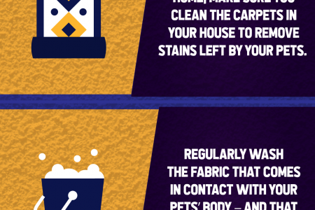 Quick Pet Odor & Stain Removal Infographic