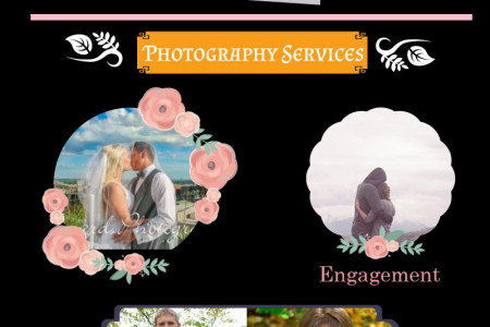 Quincy il photographers Infographic