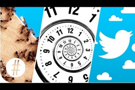 Random Numbers: Ants, Time Travel & Twitter  Infographic