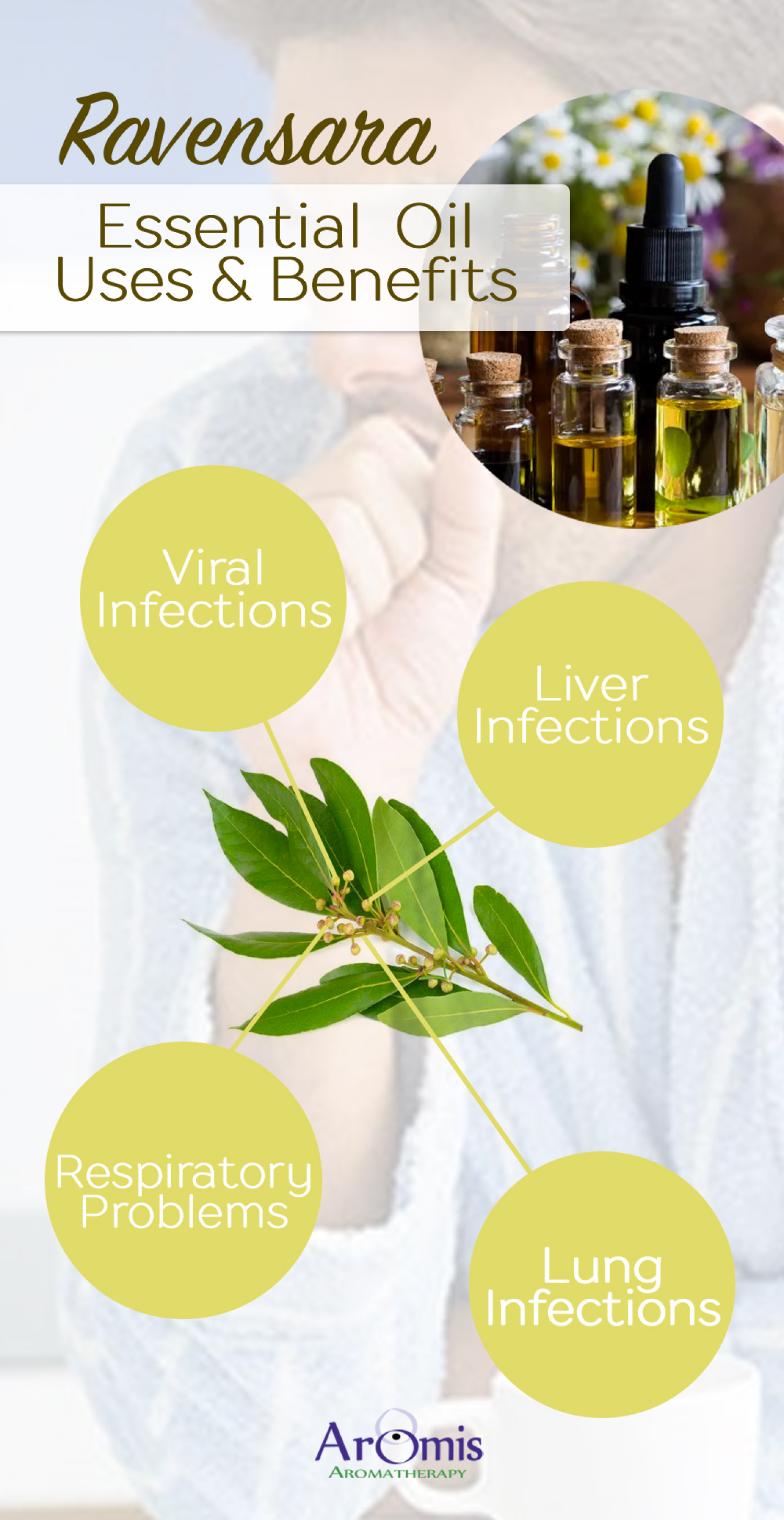 Ravensara Essential Oils Uses and Benefits Infographic