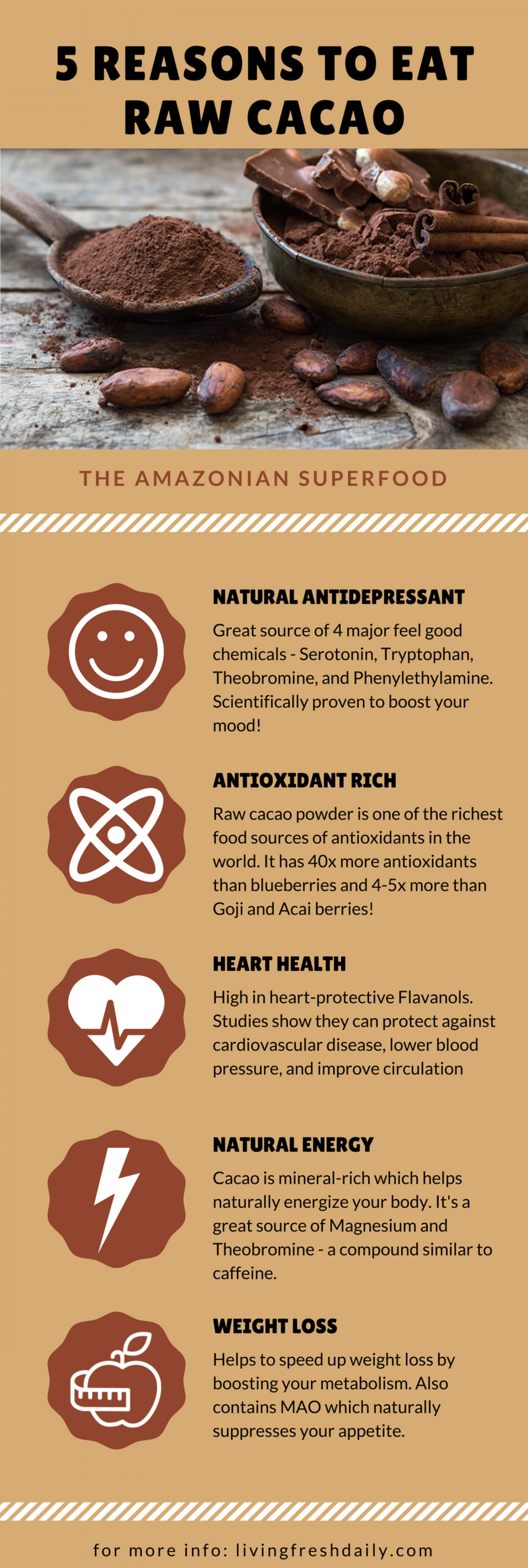 Raw Cacao Health Benefits Infographic