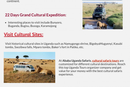 Real &Thrilling Experience during Uganda Tours When Exploring African Safaris Trip Infographic
