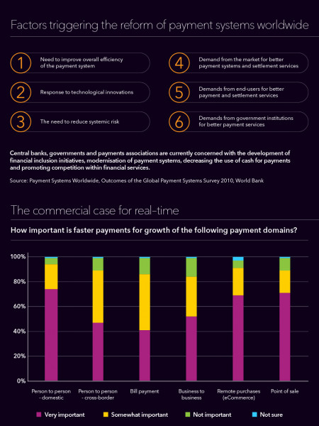 Real Time Payment Systems Infographic