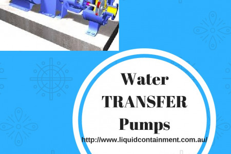 Reasonably Priced But The Best Water Transfer Pump Infographic