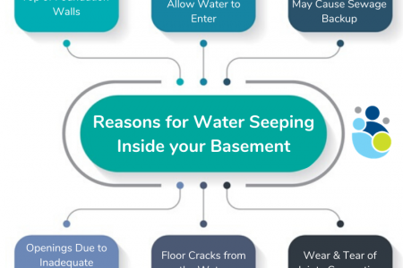 Reasons for Water Seeping Inside your Basement Infographic