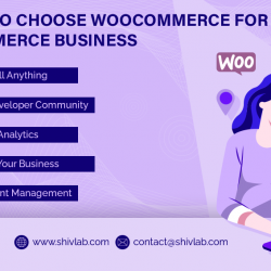 Reasons To Choose WooCommerce For eCommerce Business