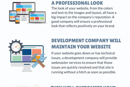 Reasons to Hire a Professional Web Development Company? Infographic