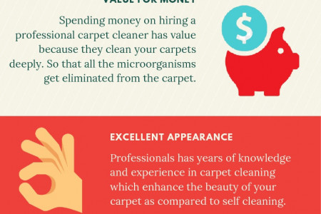 Reasons to Use A Professional Carpet Cleaner Infographic
