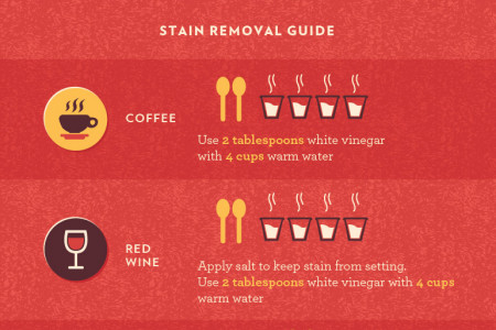 Red Carpet Treatment: How to Get Dirt, Grime, and Bacteria Out of Your Carpets Infographic