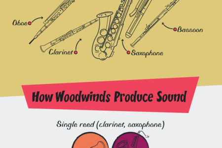 Reed Between the Lines: Meet the Woodwind Family Infographic