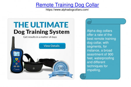 Remote training dog collar Infographic