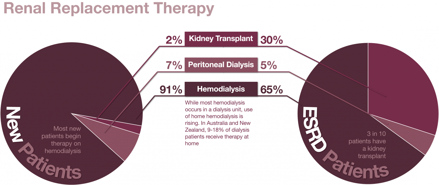 Renal Replacement Therapies Infographic