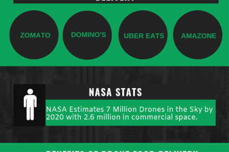 Restaurant Industry Trends: Drone Food Delivery Infographic