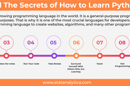 Reveal The Secrets of How to Learn Python Fast Infographic