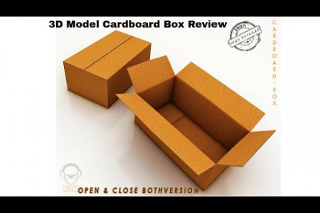 Review of 3D Model of Cardboard Box Infographic
