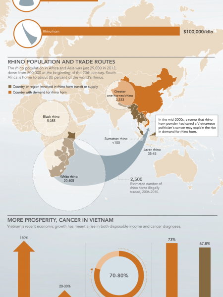Rhino Horn Is More Expensive Than Gold: The Sad Result Infographic