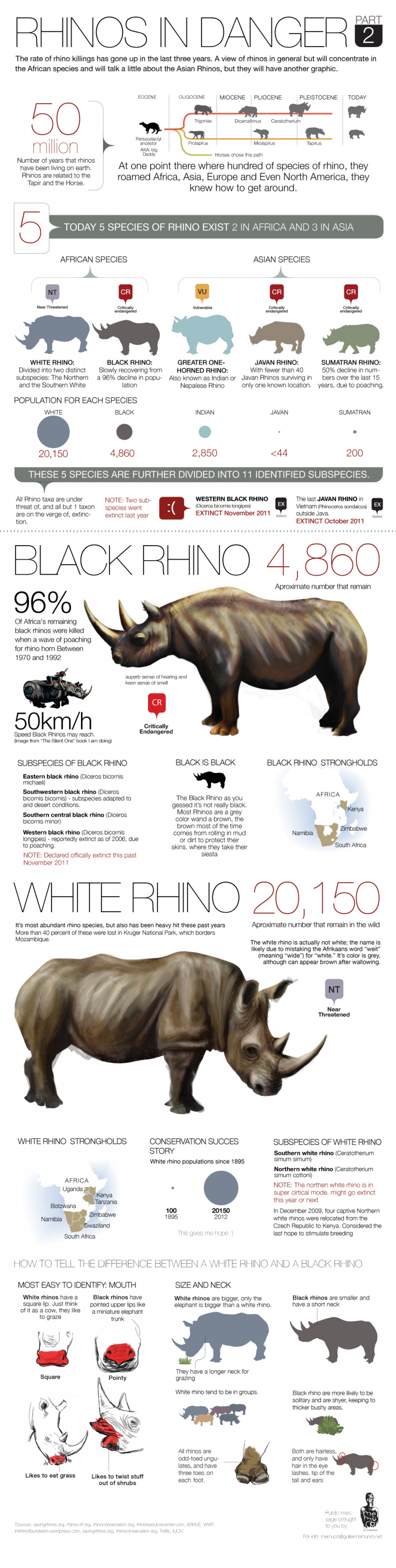 Rhinos in danger part2 Infographic