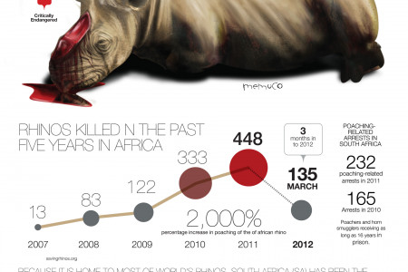 Rhinos in danger Infographic