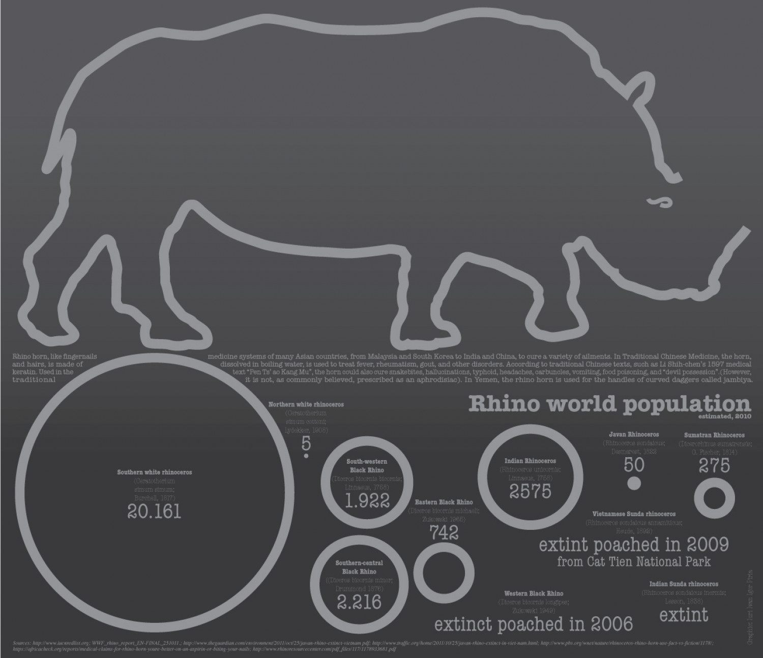 Rhinos of the XXI century Infographic