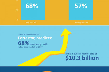 Rise of Low-Code Platform Infographic